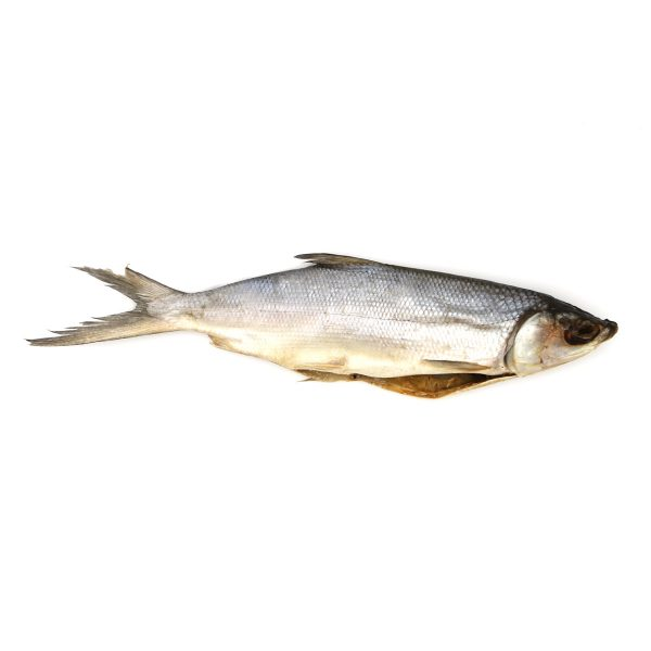 Chanos stříbřitý, sušený 1 kg